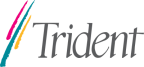 Trident Microsystems Inc.